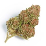Buy Weed Colorado Online